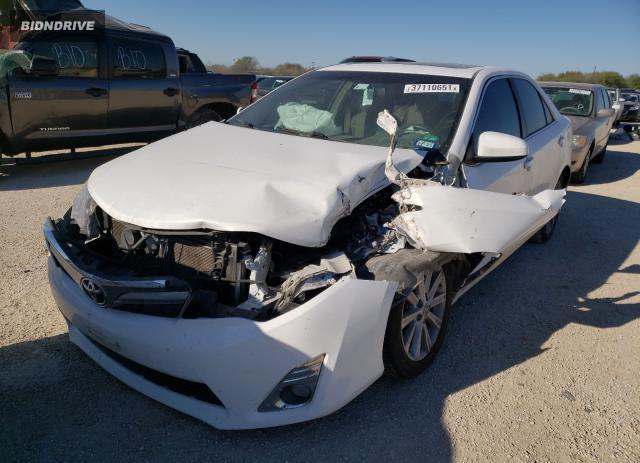 Lot #1680335531 2013 TOYOTA CAMRY L salvage car