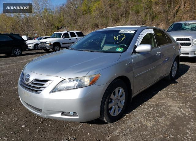 Lot #1690804021 2007 TOYOTA CAMRY salvage car