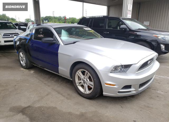 Lot #1720727681 2013 FORD MUSTANG salvage car