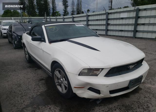 Lot #1727293804 2010 FORD MUSTANG salvage car