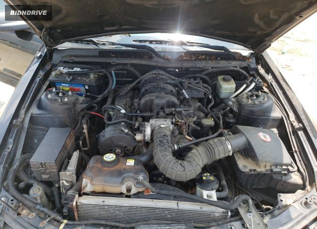 Lot #1745593027 2005 FORD MUSTANG salvage car