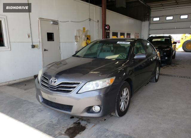 Lot #1770468174 2011 TOYOTA CAMRY BASE salvage car